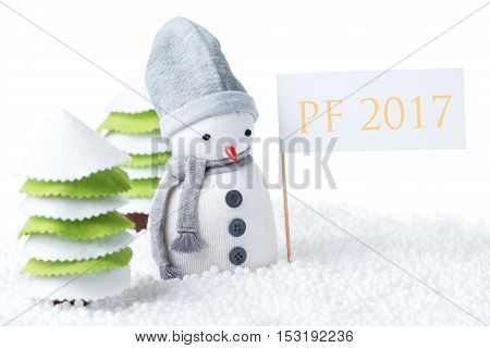 Cute festive snowman with PF 2017 sign isolated on white background