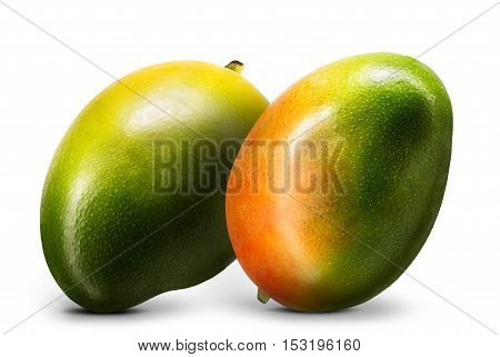 Group of mango fruit isolated on white background.
