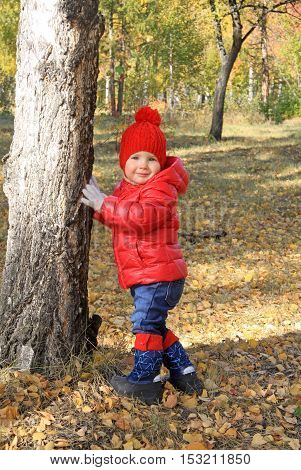 Pretty Baby Girl In Red Cap And Jacket Standing Near A Birch Tree In Autumn Park