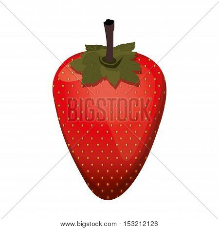 red strawberry fruit healthy food over white background. vector illustration