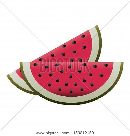 watermelon fruit healthy food over white background. vector illustration