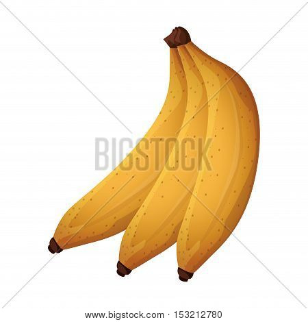 yellow banana fruit healthy food over white background. vector illustration