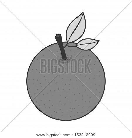 fruit healthy food over white background. vector illustration