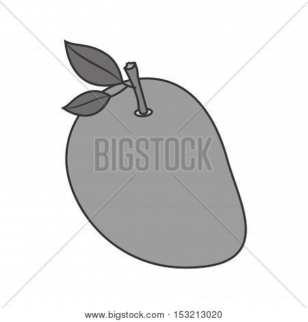 fruit healthy food over white background. vector illustration