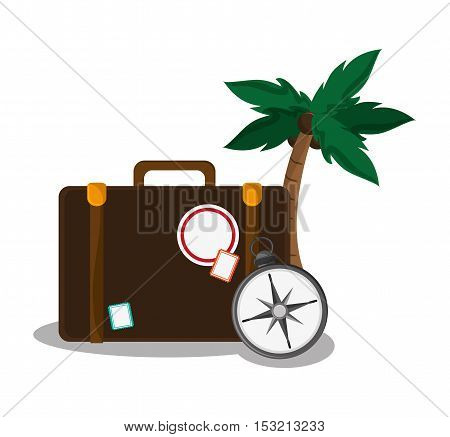 Baggage palm tree and compass icon. travel trip vacation and tourism theme. Colorful design. Vector illustration