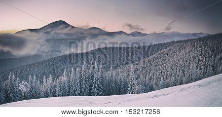 Fantastic orange evening landscape glowing by sunlight. Dramatic wintry scene with snowy trees. Gorgany ridge, Carpathians, Ukraine, Europe. Toned like Instagram filter