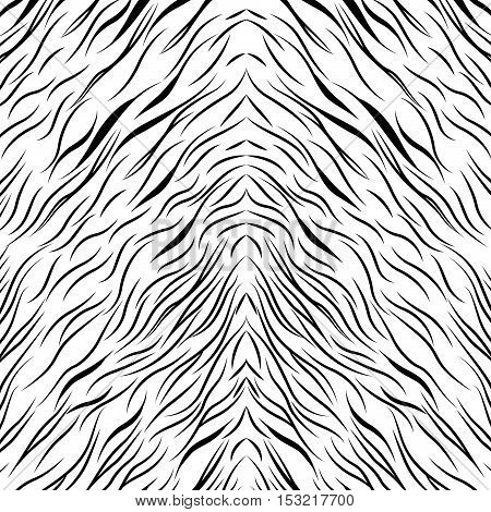 zebra animal print design background.  vector illustration