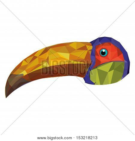 colorful toucan bird animal. abstract design over white background. vector illustration