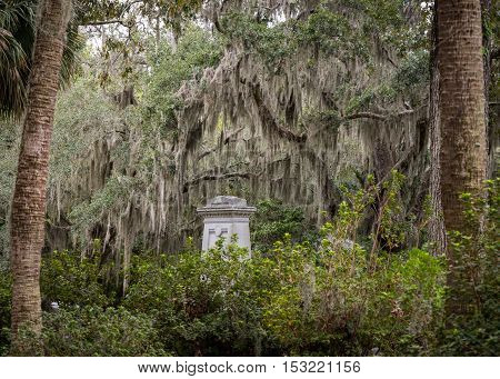 Grave Stone and Spanish Moss among palm and live oak trees
