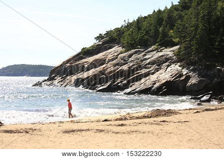 Coast and beach of Acadia National Park in Maine.