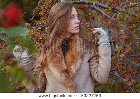 Cute redhead woman with freckles among rowan berry bushes in autumn outdoors wearing fedora hat and fur collar beige coat