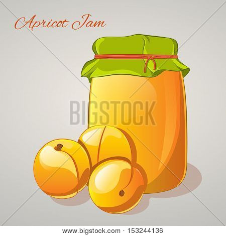 Apricot jam in a jar and fresh apricots isolated on grey background. Simple cartoon style. Vector illustration.