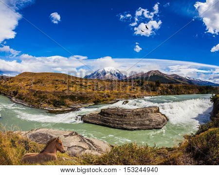 Chile, Paine Cascades. Cold water is emerald Paine river forms a cascading waterfalls. Torres del Paine National Park - Biosphere Reserve