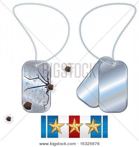 Soldier dogtags- isolated vector