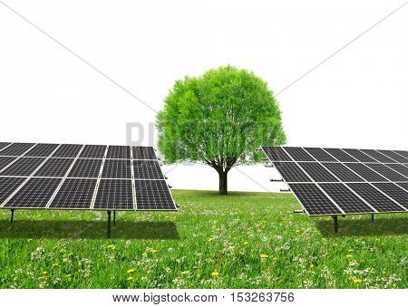 Solar energy panels and tree on meadow with copy space. Sustainable resources.