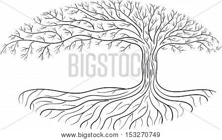 Druidic Yggdrasil tree oval silhouette black and white logo. poster