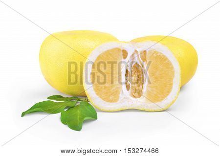 oroblanco sweetie fruit group a hybrid of pomelo and white grapefruit.