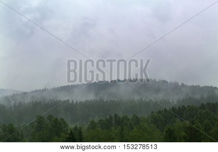 Morning fog in siberian forest. Rain taiga landscape