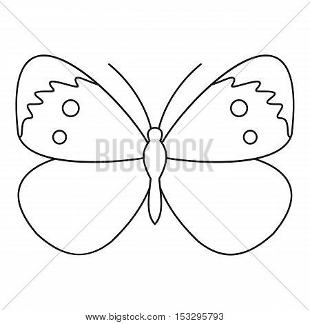 Copper butterfly icon. Outline illustration of copper butterfly vector icon for web