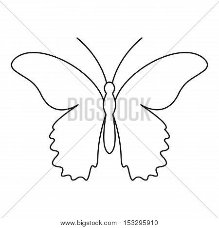 Butterfly urticaria icon. Outline illustration of butterfly urticaria vector icon for web