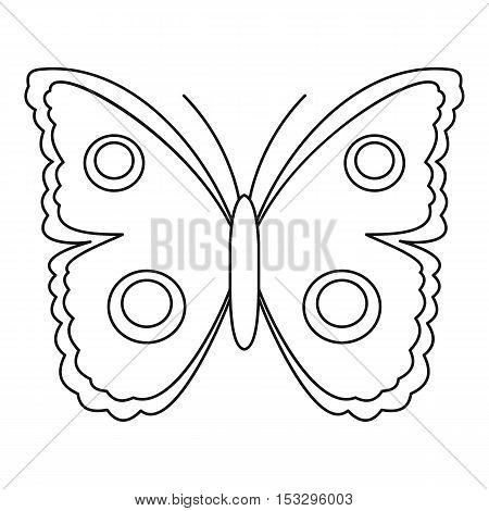 Big spot butterfly icon. Outline illustration of big spot butterfly vector icon for web