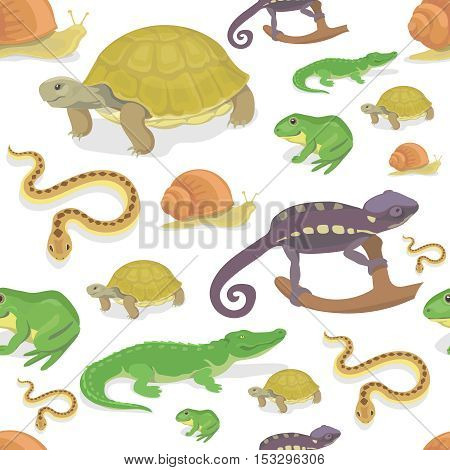 Reptile and amphibian seamless pattern on white background. Crocodile turtle snake chameleon vector