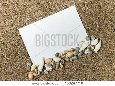 blank paper for messages on a background of sand bordering of sea shells