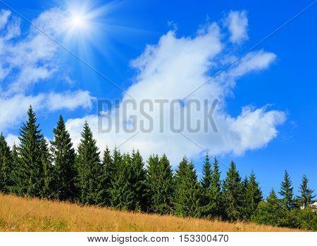 Summer Sunshine Mountain Slope (carpathian, Ukraine).