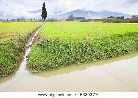 Full water ditch in a field after torrential rain - Image with copy space