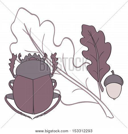 Scarab. Oak leaf and acorn. Vector illustration.