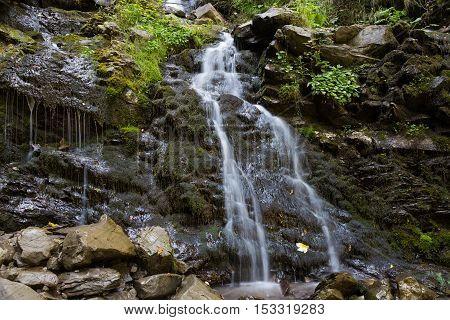 Tryfanets waterfall in the rocks in the forest - mountain Ukrainian Carpathians