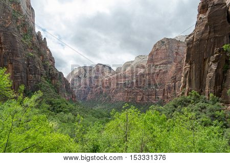 Zion From The Weeping Rock