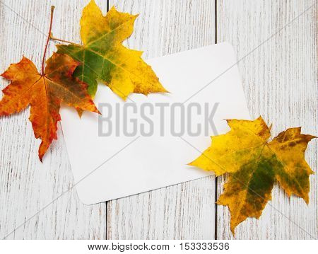 Colorful Autumn Leaves With Card