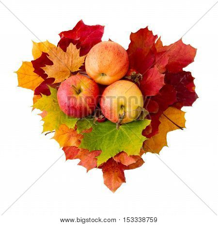 Heart from maple leaves and three apples isolated on white.