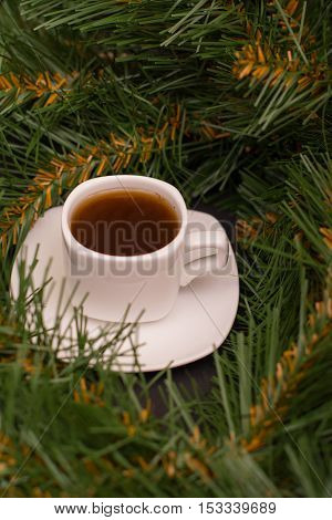 Small white cup of coffee and fir branch
