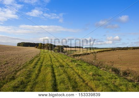 Patchwork Fields And Footpath