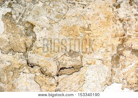 Damaged wall texture with old aged weathered paint and plaster cracked on the surface, building in need of repair, background