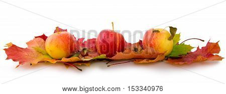 Colorful background of autumn leaves and apples. Abstract background of autumn leaves. Autumn background.