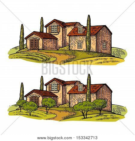 Rural landscape with villa or farm with field olive tree and cypress. Vector engraving vintage color illustration. Isolated on white background.