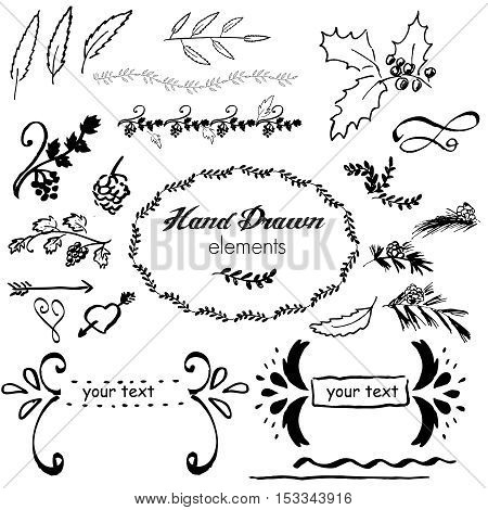 collection hand-sketched vector element floral, grapes, arrows and frames