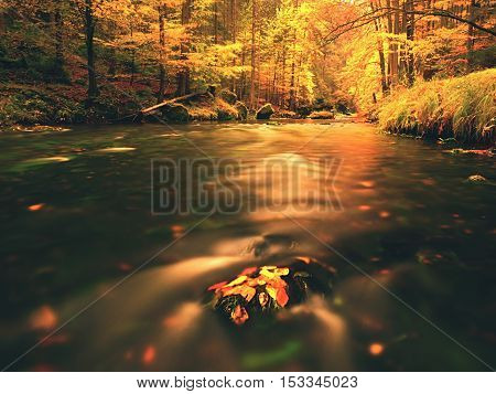Autumn Mountain River. Blurred Waves, Mossy Stones
