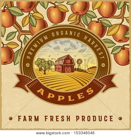 Vintage colorful apple harvest label. Editable vector illustration in retro woodcut style with clipping mask.