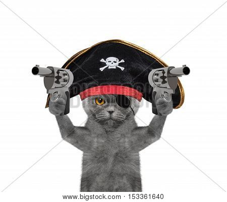 cat in a pirate costume with guns -- isolated on white