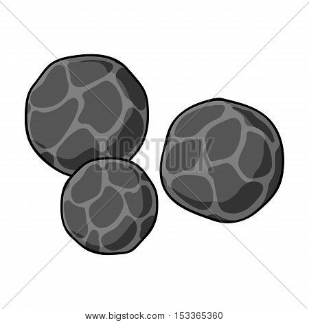 Black pepper icon in monochrome style isolated on white background. Herb an spices symbol vector illustration.
