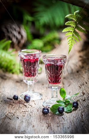 Tasty liqueur with blueberries and alcohol on old bark