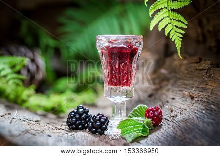 Homemade Liqueur Made Of Alcohol And Blackberries