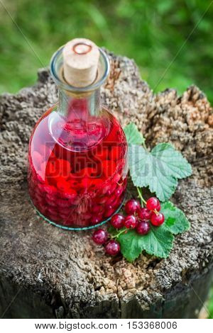 Tasty Liqueur Made Of Redcurrants And Alcohol