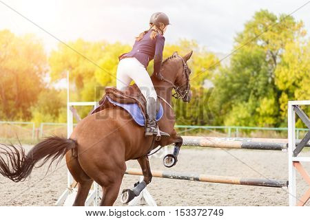 Equestrian sport background. Young sportswoman jumping over a hurdle on Show jumping competition