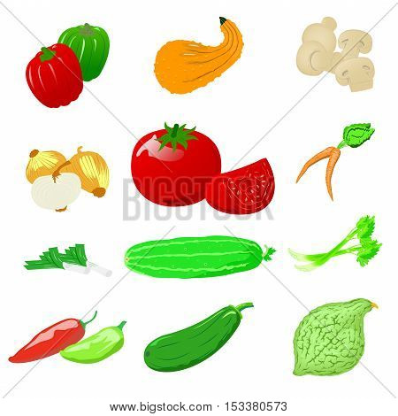 Vegetables icons, detailed photo realistic vector set