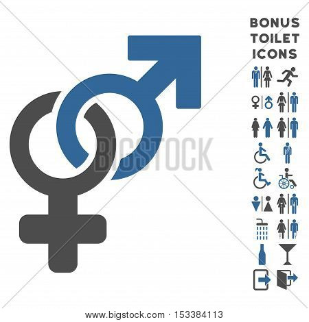 Heterosexual Symbol icon and bonus male and woman restroom symbols. Vector illustration style is flat iconic bicolor symbols, cobalt and gray colors, white background.